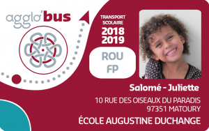 carte scolaire agglo bus